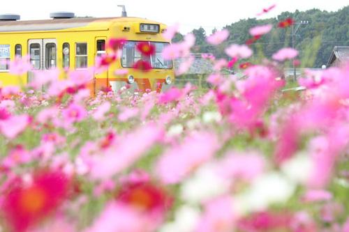 2010_10_16三里