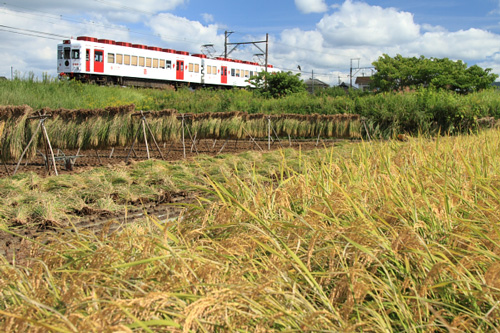 2010/10/11_甘露寺前