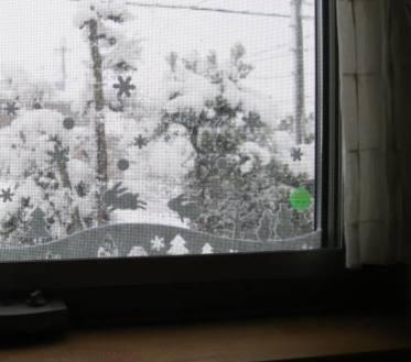 1月27日窓外
