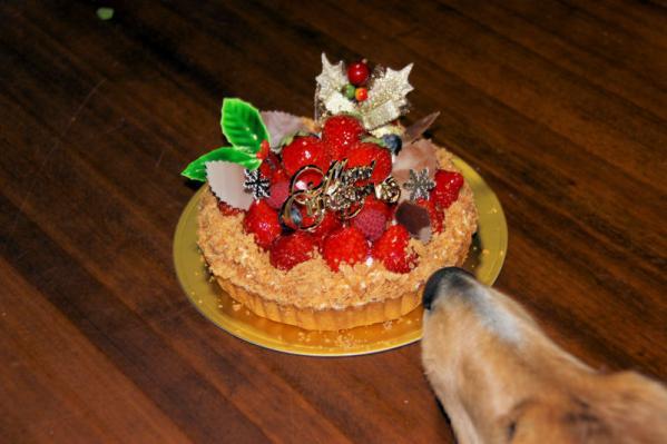 IMG_6602クリスマスケーキ