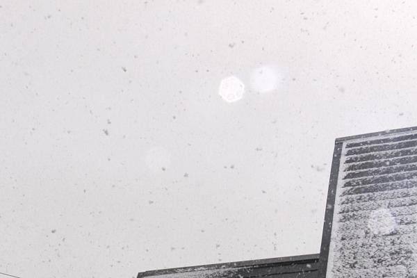 IMG_7848雪