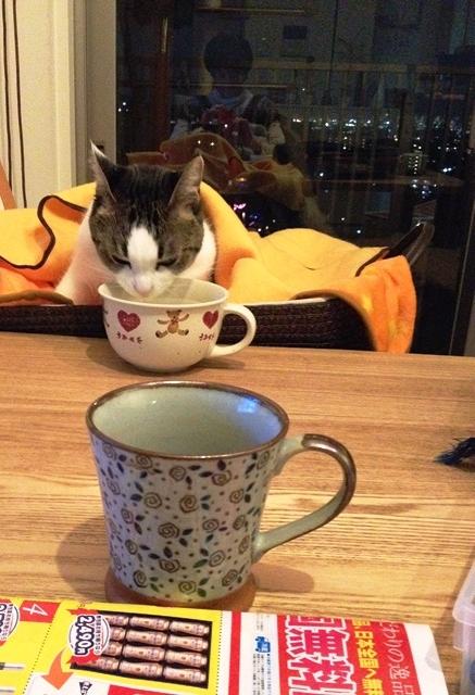ルルとお茶