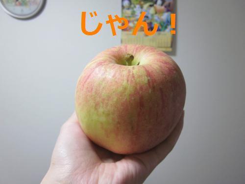 青森りんご!
