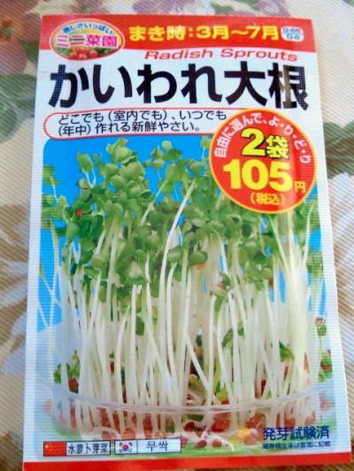 2011-6-25-4_convert_20110625153653.jpg