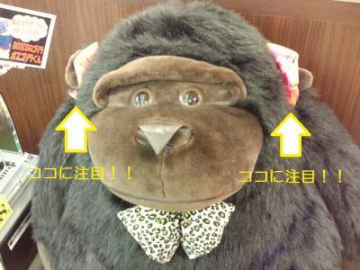 2012-3-23-1_convert_20120323211104.jpg