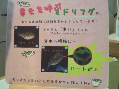2012-5-6-22_convert_20120506151645.jpg