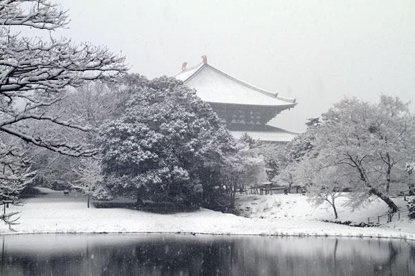 雪化粧の東大寺3