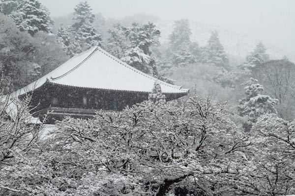 雪化粧の東大寺6