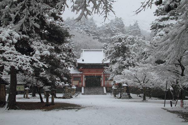 雪化粧の東大寺7