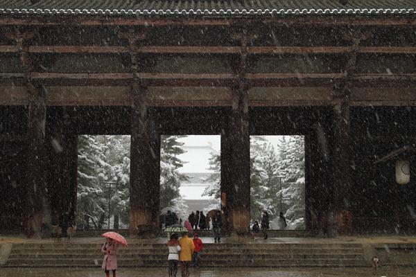 雪化粧の東大寺1