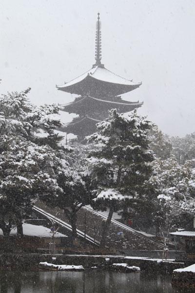 興福寺 雪景色2