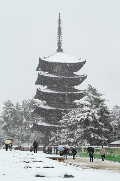 興福寺 雪景色3