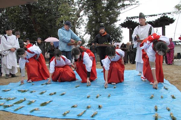小泉神社 お田植祭6