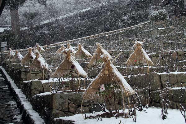 長谷寺 雪景色4