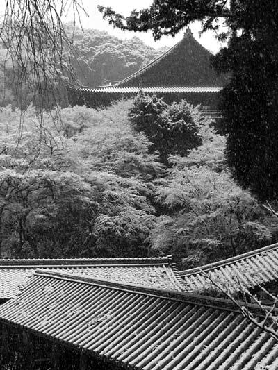 長谷寺 雪景色5