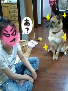 03_20101002183419.jpg
