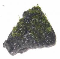 プレモス 溶岩石