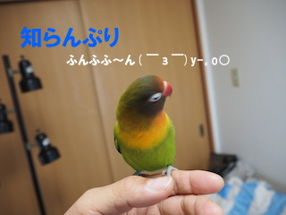 PB210052.jpg