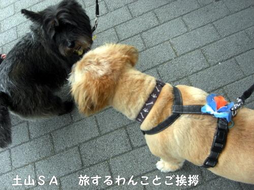 2010.08.21 fuji 0002