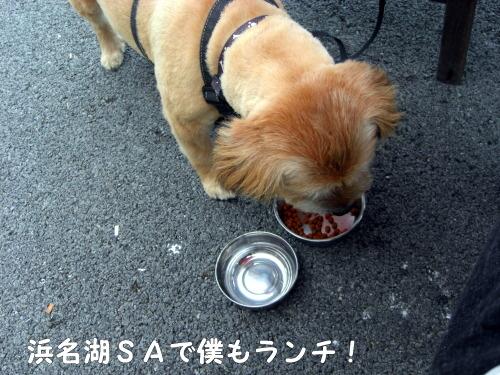 2010.08.21 fuji 0004