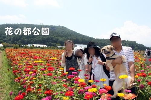 2010.08.21 fuji 2 0014