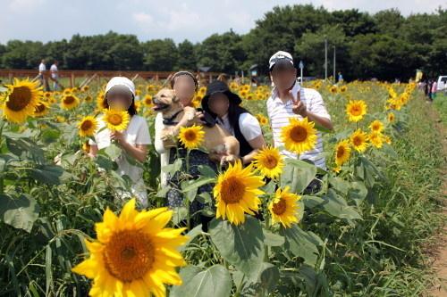 2010.08.21 fuji 2 0015