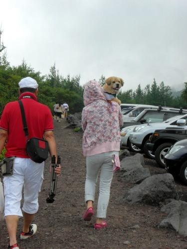 2010.08.21 fuji 0027