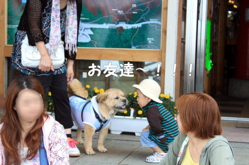 2010.08.21 fuji 2 0054