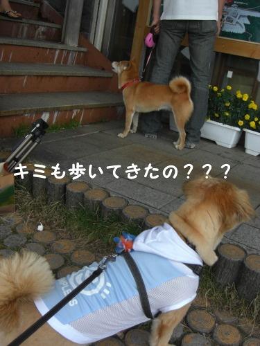 2010.08.21 fuji 0042