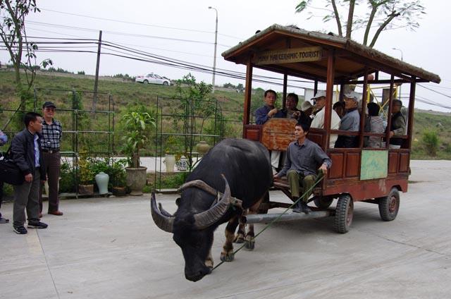 a11f17バツチャン村水牛車