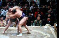 大相撲(1)