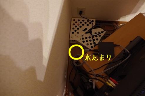 IMGP8259__RT.jpg