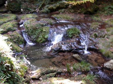 鰐淵寺付近の川