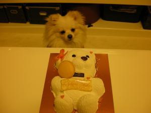 ケーキとトエ