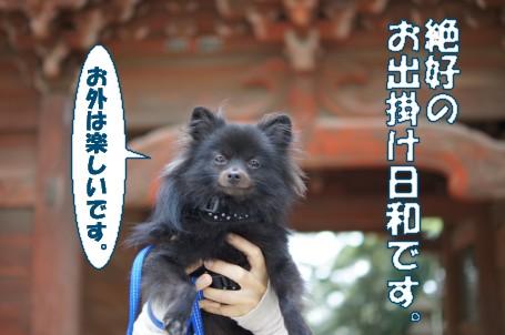 20111007_1.jpg