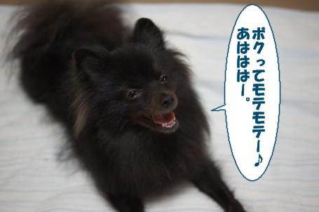 20111018_6.jpg