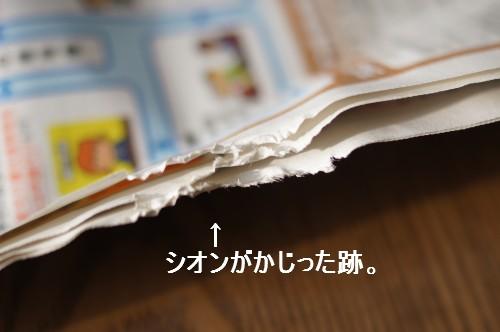 20111122_2.jpg