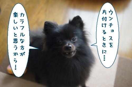 20111122_4.jpg