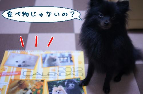 20111214_2.jpg
