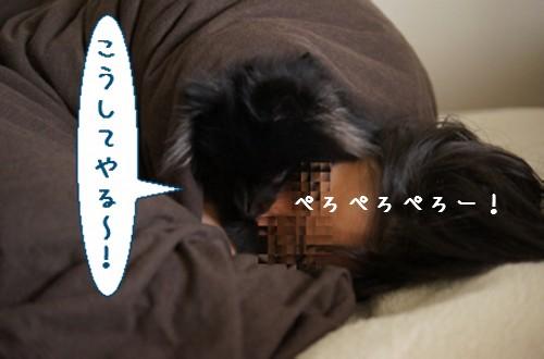 20111219_5.jpg