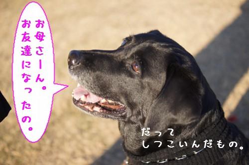 20111221_6.jpg