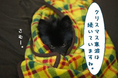 20111226_1.jpg
