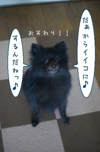 20120106_4.jpg