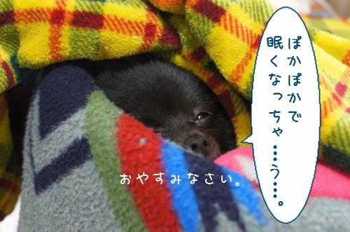 20120119_5.jpg