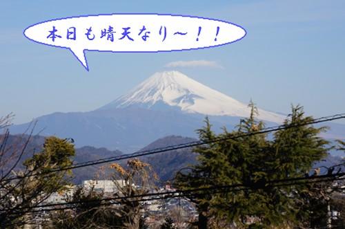20120228_1.jpg