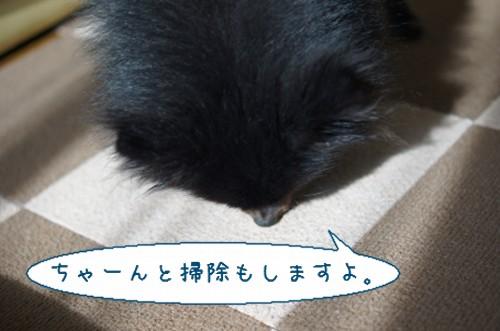 20120303_8.jpg