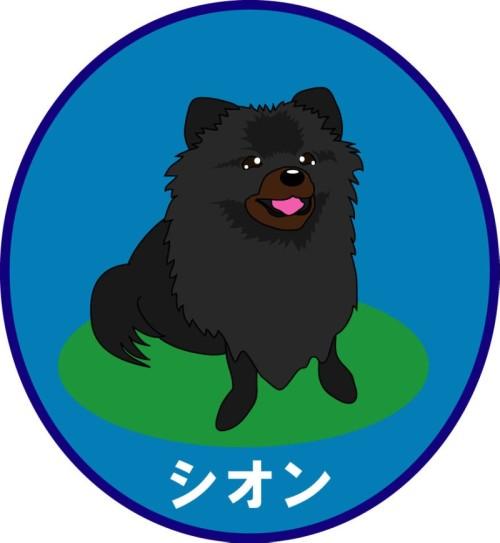 20120312_shion.jpg