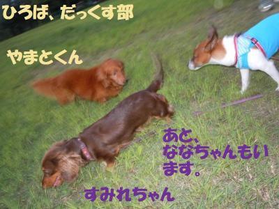 DSCN2335_convert_20110920124555.jpg