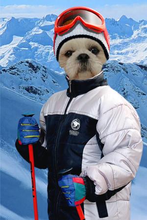 konbu ski