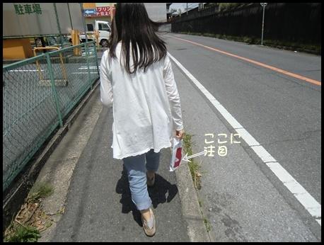 CIMG0002_R_20110525233012.jpg